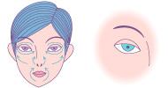 目の周り、口周り、鼻周り、頬など顔の筋肉に沿って